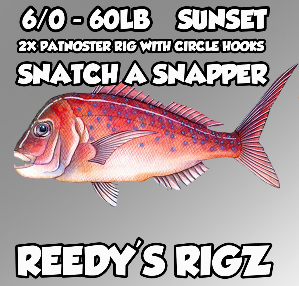 snapper fishing rigs , fishing reports melbourne snapper, fishing reports w.a albany , fishing rigs for snapper,