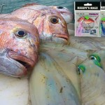 flasher rigs, snapper snatchers