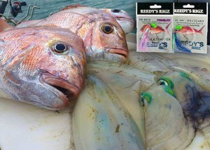flasher rigs, snapper snatchers , flasher rigs