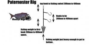 diagram paternoster rig