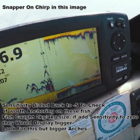 snapper on fish finder,snapper ,chirp sounder, snapper on chrip