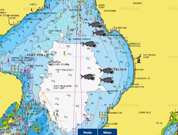 fishing report , snapper report port phillip bay, fishing ,snapper season , spots ,gps marks , melbourne snapper