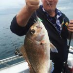 snapper fishing ,fishing, australian snapper ,snapper fishing tackle , fishing rigs , snapper snatchers , whiting rig