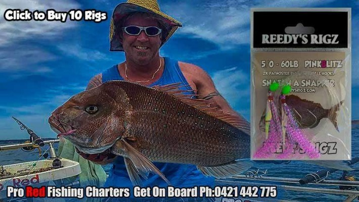 reedy's rigz, flasher rig,snapper snatcher, fishing rigs, Pre tied fishing rig,snapper,pro red fishing charters