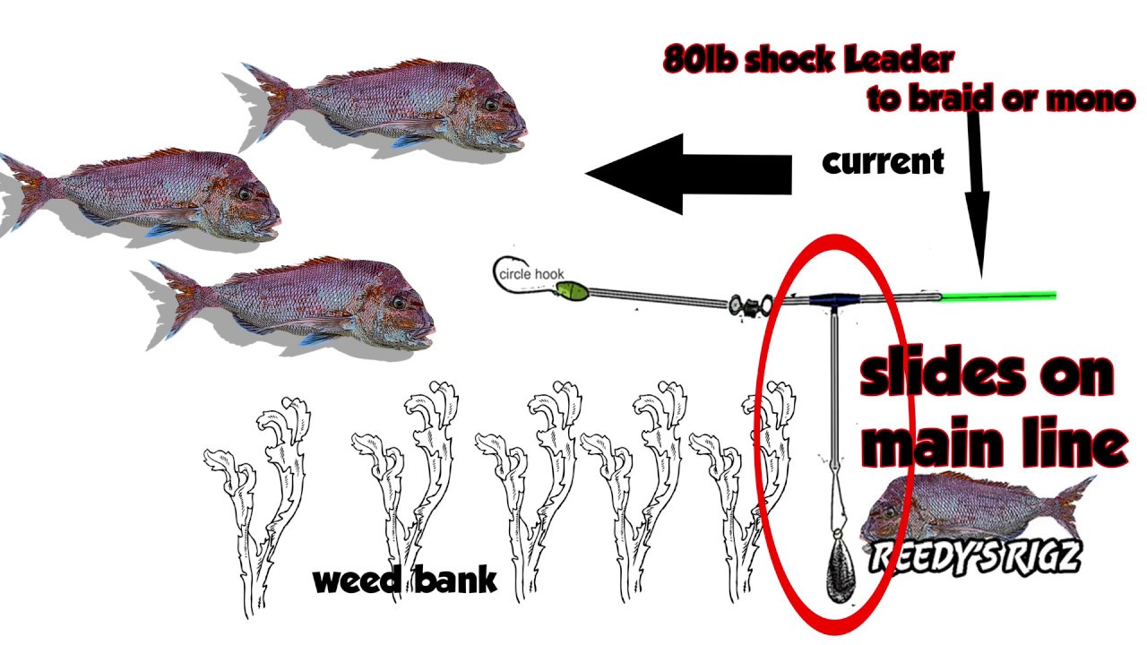 Tie Running    Rig    Bait    Fishing    Rigs Snapper Tutorial Video