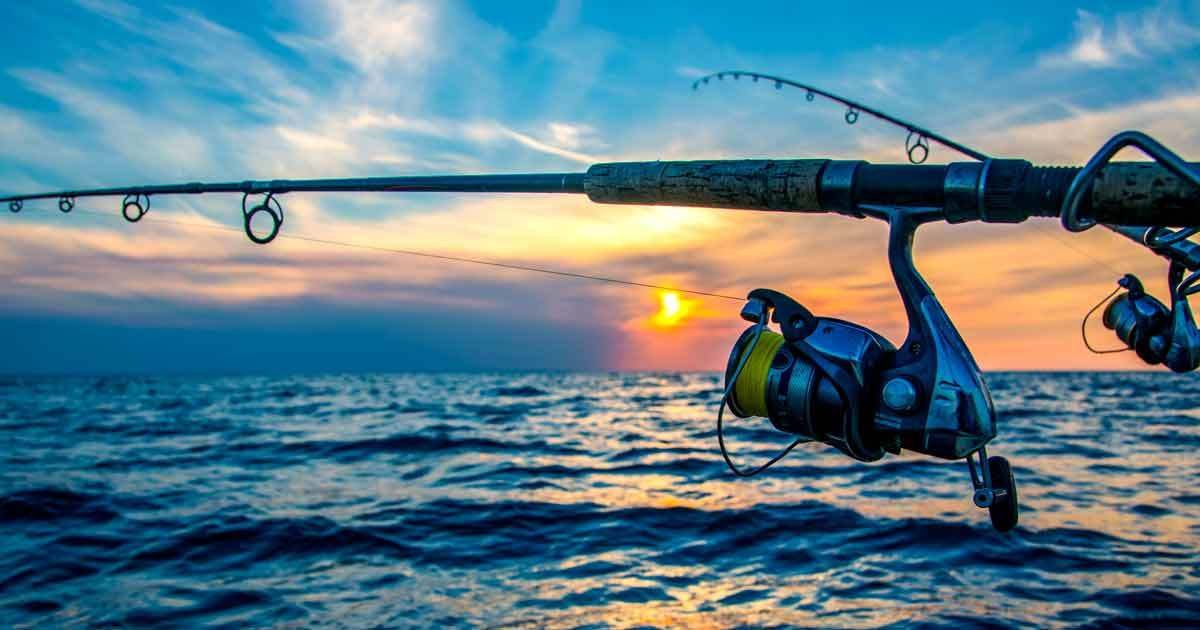 Snapper fishing tackle store ebay cheap tackle online for Online fishing store