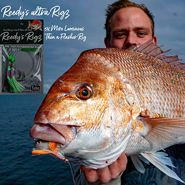 ultra rig , flasher rig, reedys rig, Melbourne Snapper , snapper , paternoster, reedys rigz