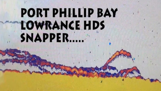 snapper on sounder, lowrance hds snapper, snapper, fish finder, port phillip bay snapper hds, sounding snapper,
