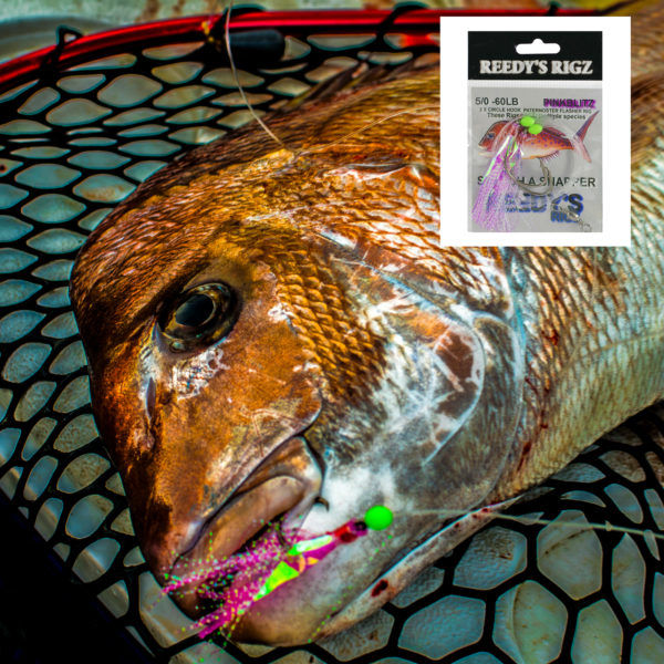 snapper snatchers , fishing , tackle