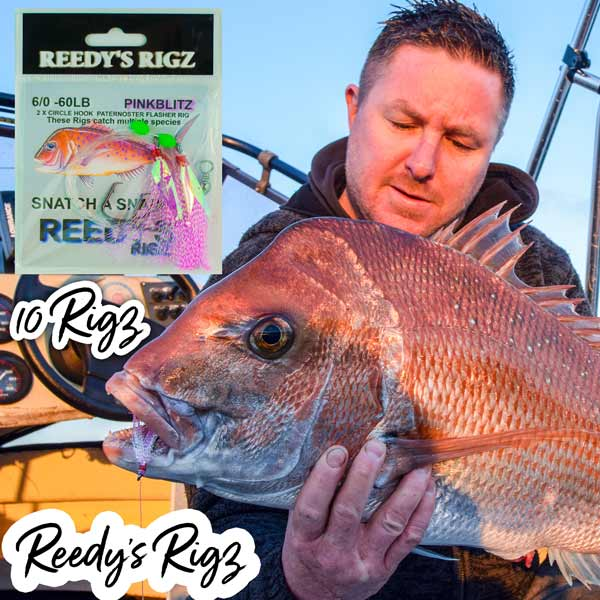 snapper rigs, reedys rigz